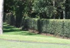 Armadale VIC Wire fencing 15